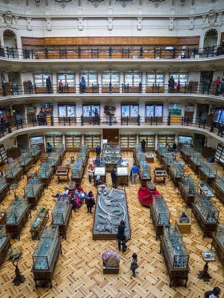 Imagen de una exposición en el Museo de Arquitectura de Madrid, libre de derechos de autor (Pixabey)